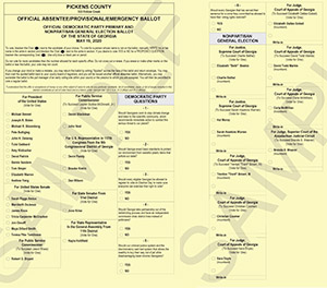 Pickens County Democratic Party Ballot June 9, 2020