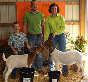 Local 4-H'ers show off their meat goats which is one of the fastest growing livestock industries