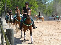 Pickens 4-H Horse Show