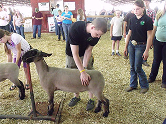 Pickens County 4-H Competes in Livestock Judging