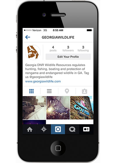 ENJOY GEORGIA WILDLIFE IMAGES FROM DNR ON INSTAGRAM