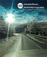 Amicalola EMC Annual Report 2014
