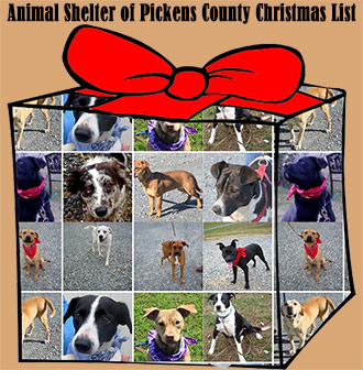 Animal Shelter of Pickens County Christmas List