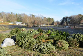 Over 75 Christmas Trees Recycled by KPB's Bring One for the Chipper Program
