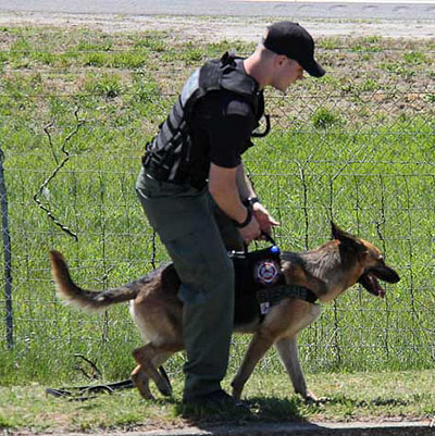 Bethany Salem Volunteer Fire Department's SAR K-9 Unit Seeking Donations for New Search and Rescue K-9