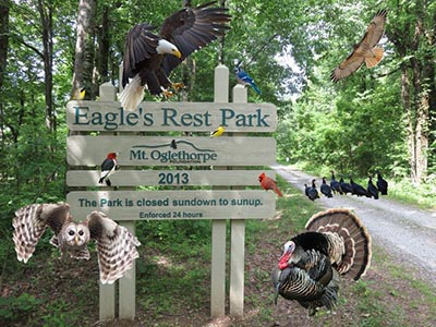 One of Eagle's Rest Trails Closed for a Few Weeks for Repairs