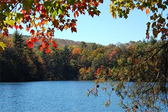 Georgia State Parks's 'Leaf Watch' Helps Leaf Peepers Plan Trips