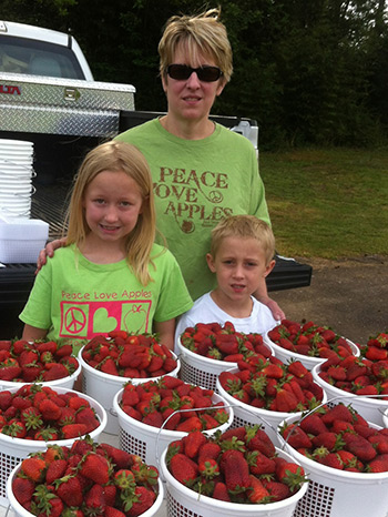 Locally grown Strawberries at the Jasper Farmers Market