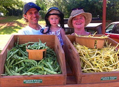 Beans, Squash, Cucumbers at the Jasper Farmers Market