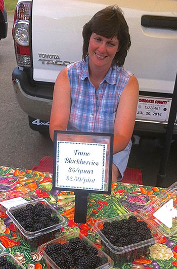Berries for Jams and Jellies at the Jasper Farmers Market