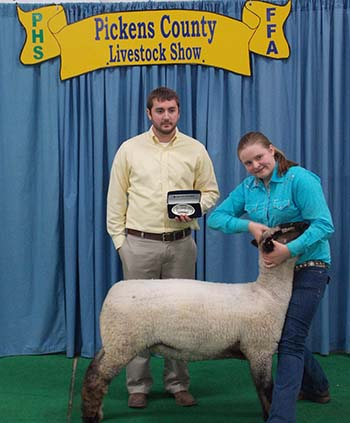 Local Livestock Show Planned