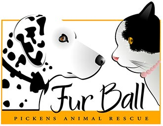 Earlier Date and New Venue for This Year's Fur Ball