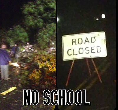 Downed Trees and Power Lines Force School and Road Closings