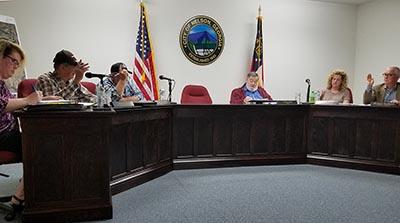 Nelson City Council April 2017