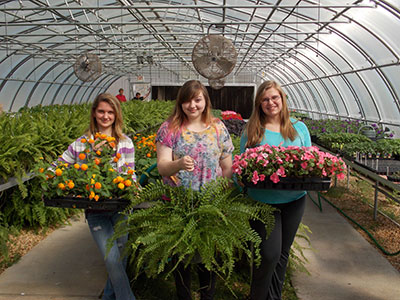 PICKENS HIGH HORTICULTURE PLANS PLANT SALE