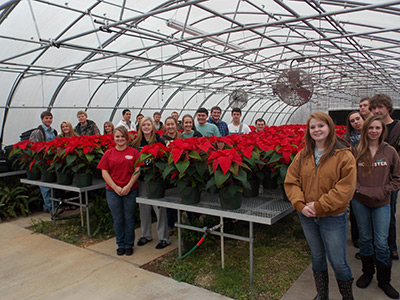 DECK THE HALLS WITH PHS POINSETTIAS