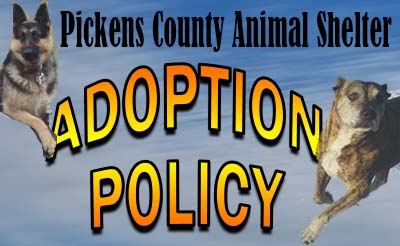 Pickens County Animal Shelter Adoption Policy Clarification