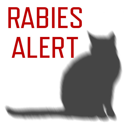 Pickens County Animal Control Officers Exposed to Rabid Cat