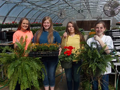 'See What's Growing On' at PHS Plant Sale