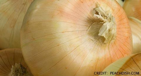 Are You Ready for the Taste of Farm-Fresh Vidalia Sweet Onions?