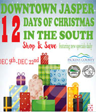 12 Days of Christmas in the South December 9-22