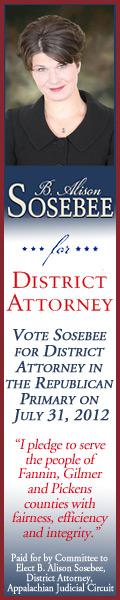 Vote for B. Alison Sosebee for District Attorney Appalachian District