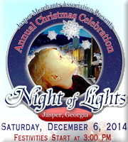 Night of Lights Celebration and Parade on December 6, 2014.