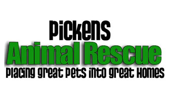 Volunteer at Pickens Animal Rescue